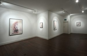 Amusements | Gavin Tremlett | CHARLIE SMITH LONDON | Installation View (2) | 2011