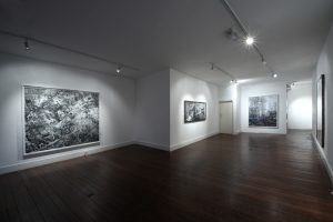 The Shadow Line | Eric Manigaud | CHARLIE SMITH LONDON | Installation View (1) | 2013