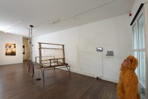 Young Gods | CHARLIE SMITH LONDON | Installation View (2) | 2013