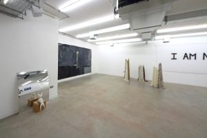 Young Gods | GRIFFIN GALLERY | Installation View (4) | 2016