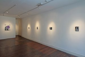 Hype Trace   Gavin Nolan   CHARLIE SMITH LONDON   Installation View (5)   2016