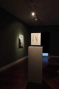 John Stark's DoL Po | CHARLIE SMITH LONDON | Installation View (5) | 2016