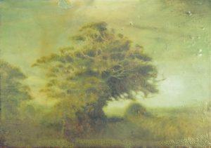 Sam Douglas | Goathurst | 2016 | Oil, varnish on board | 16x22cm