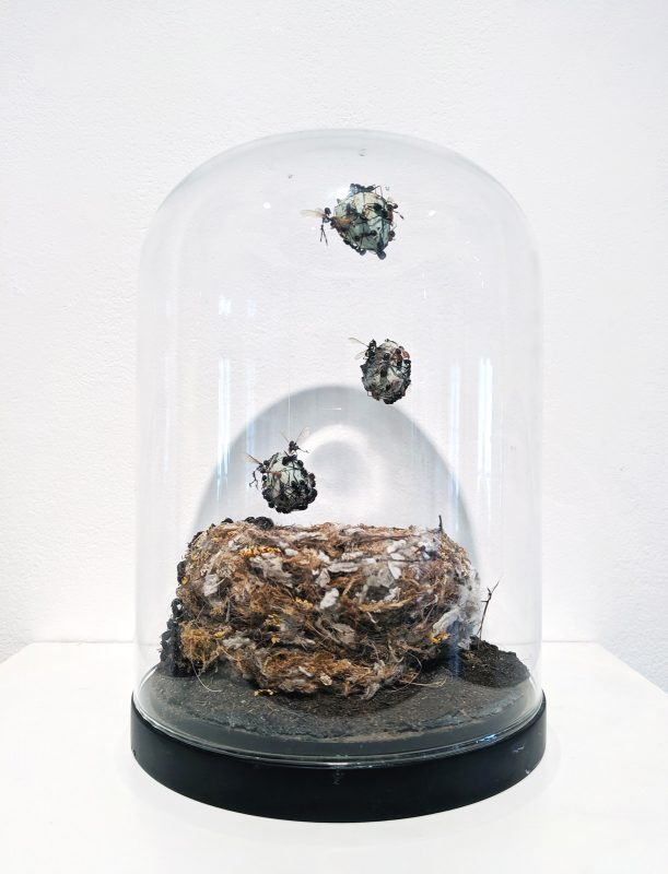 Tessa Farmer | The Raid | 2018 | Bird's nest, insects, polymer clay, plant roots | 21(h)x15(w)x15(d)cm