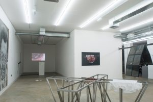 Young Gods | GRIFFIN GALLERY | Installation View (3) | 2014