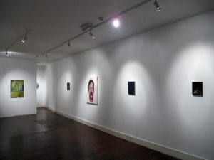 Gallery Artists   CHARLIE SMITH LONDON   Installation View (1)   2013