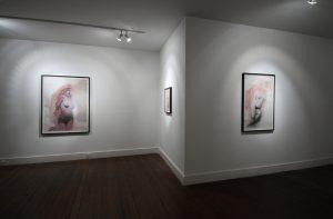Amusements | Gavin Tremlett | CHARLIE SMITH LONDON | Installation View (3) | 2011