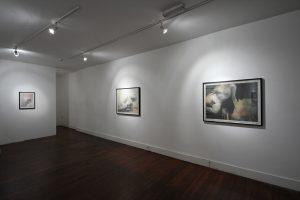 Amusements | Gavin Tremlett | CHARLIE SMITH LONDON | Installation View (4) | 2011
