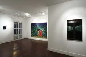 The Beard | CHARLIE SMITH LONDON | Installation View (1) | 2011