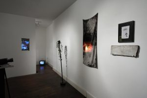 The Order of Things | CHARLIE SMITH LONDON | Installation View (3) | 2013