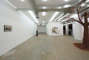Young Gods   GRIFFIN GALLERY   Installation View (3)   2013