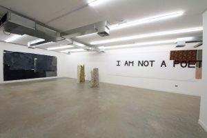 Young Gods   GRIFFIN GALLERY   Installation View (3)   2016