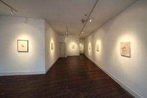 Hybris   Gavin Tremlett   CHARLIE SMITH LONDON   Installation View (3)   2016