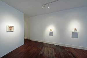 Curious Room | Wendy Mayer | CHARLIE SMITH LONDON | Installation View (7) | 2016