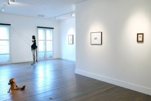 Context: Gallery Artists & Collaborators | CHARLIE SMITH LONDON | Installation view (1)