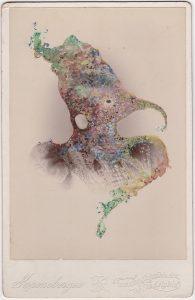 Tom Butler   Kronenberger   2018   Gouache on Albumen print   16.5×10.8cm