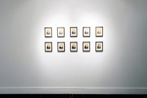 Ensemble   CHARLIE SMITH LONDON   Installation view (2)