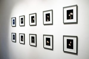 Ensemble   CHARLIE SMITH LONDON   Installation view (4)