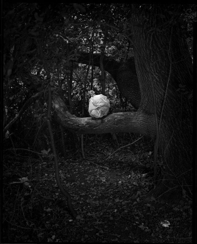 Danny Treacy   Rituals (Forest), Fig.5   2017   Silver gelatin print (ed.9)   25x20cm