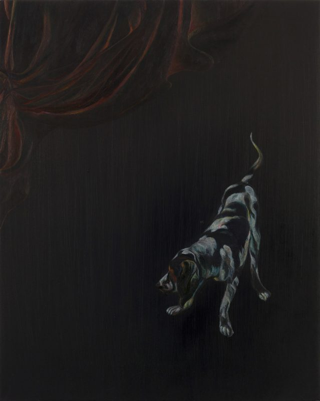 Emma Bennett | Stray | 2019 | Oil on oak panel | 25x20cm