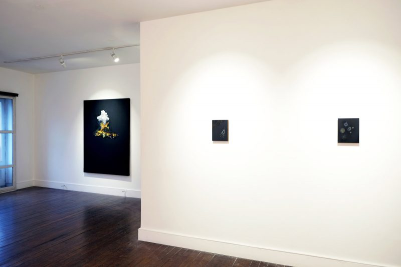 Volcano Lovers | CHARLIE SMITH LONDON | Installation View (1)