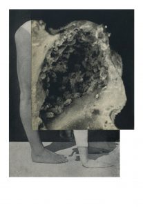 Cecilia Bonilla | Between Animals and Trees 2 | 2020 | Collage on card | 29.7x21cm