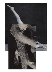 Cecilia Bonilla | Between Animals and Trees 4 | 2020 | Collage on card | 29.7x21cm