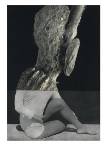 Cecilia Bonilla | Between Animals and Trees 5 | 2020 | Collage on card | 29.7x21cm