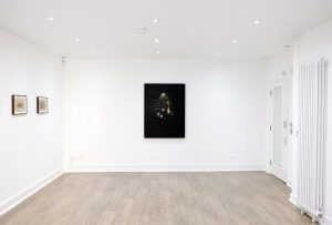 All Aflame | CHARLIE SMTIH LONDON | Installation View 1
