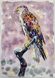 Dominic Shepherd | Hawklord | 2021 | Watercolour, oil, soft pastel on paper | 30x21cm